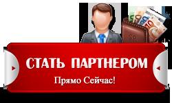 statpartnerom-liv5.net